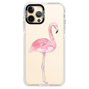 Silikonové pouzdro Bumper iSaprio - Flamingo 01 - iPhone 12 Pro Max